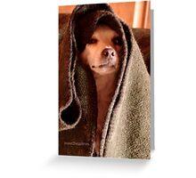 Master Obi-Wan Kenobi Chihuahua  Greeting Card
