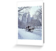 Horse Carriage in Central Park Greeting Card