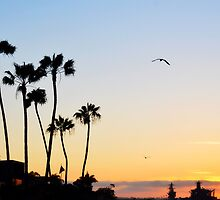 Coronado Sunset CALIFORNIA by CaptureLight