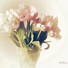 pale tulips by aquaarte