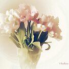 pale tulips by aquaarte