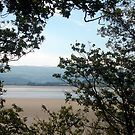Portmeirion 9 by Hannah Edwards