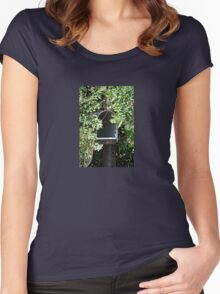 Rural Mailbox Women's Fitted Scoop T-Shirt