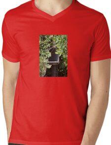 Rural Mailbox Mens V-Neck T-Shirt