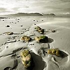 Green Stones on a North Wales Beach by Mal Bray