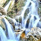 Bhatta Falls by Neeraj Nema