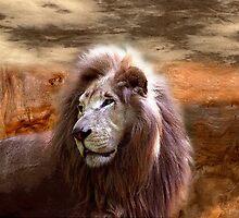 lion by arteology