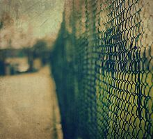 Fence No.5 by Sid Black