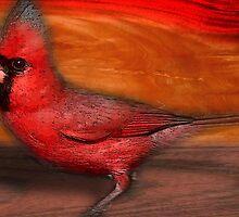 cardinal by arteology