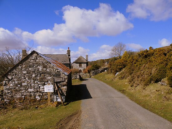 Dartmoor: The Road to Rogue's Roost by Rob Parsons