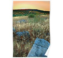 Blue Stones in a Rural Andalucian Landscape Poster