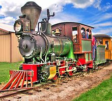Narrow Gauge Train-HDR by ECH52