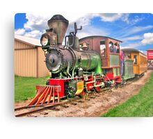 Narrow Gauge Train-HDR Metal Print