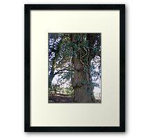 Tree in Upton Park, Easter Framed Print