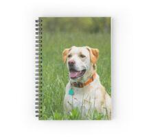 Dog in a field of green grass Spiral Notebook