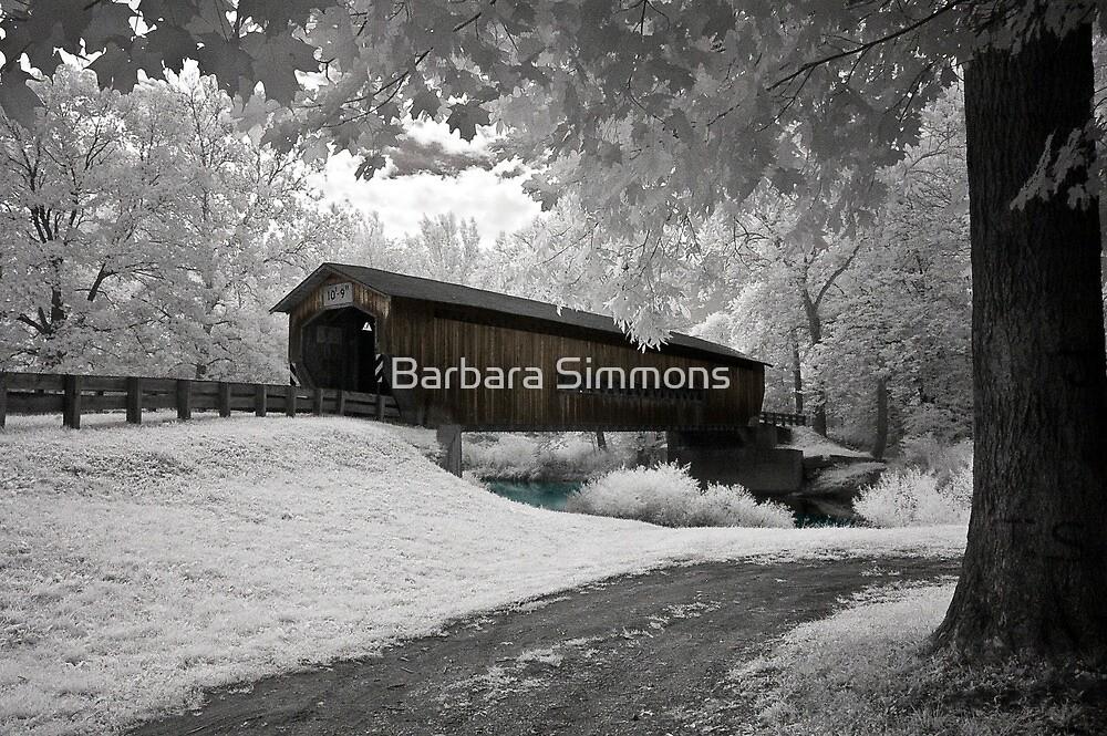 """Benetka Road Bridge"" by Barbara Simmons"
