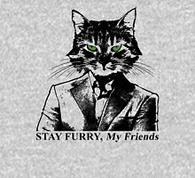 Stay Furry My Friends Mens V-Neck T-Shirt