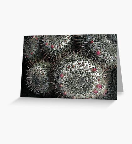 cactus abstract III Greeting Card