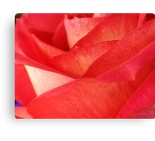 Rose Pedals Canvas Print