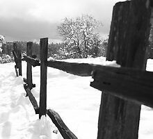 Old wood fence in the snow by gregorydean