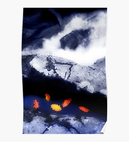 A Flotilla of Leaves in a Rockpool near Swallow Falls Poster