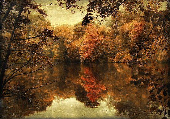 Autumn's Reflection by Jessica Jenney