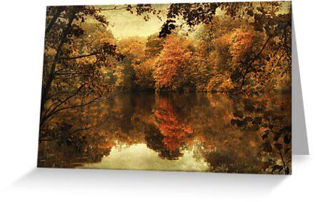 Autumn's Reflection by Jessica Jenney