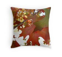 cacophony of colour Throw Pillow