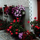 Flowered Door by sstarlightss