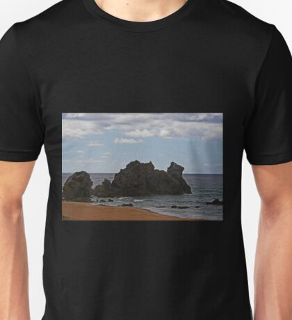 Camel Rock Unisex T-Shirt