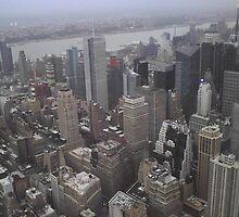 New York City:) by Deena Muir
