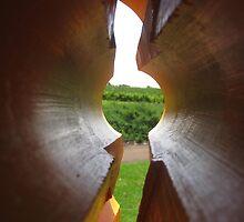 Orange lookout- Vasse Felix by philpy