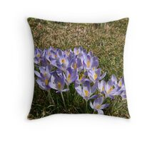 First one,s  #1 Throw Pillow