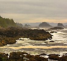 """Lifting Fog- Pacific Rim, Vancouver Island, BC, Canada by Bruce Jones"
