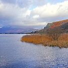 Derwent Colours by Harry Oldmeadow