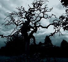 Eerie tree by Agnes McGuinness