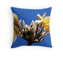 Welcome Flowers Throw Pillow