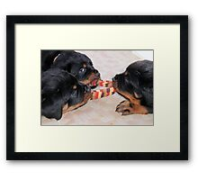 "Pups At Play - ""Three's A Crowd"" Framed Print"