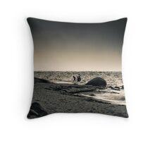 Winter Plunge Throw Pillow