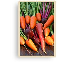 Harvest Organic Vegetables Canvas Print