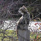 Pocahontas - The 'Unloved' Kitty by bellerina