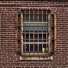 These Prison Bars by Eric Scott Birdwhistell