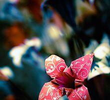 ...paper flowers... by Geoffrey Dunn