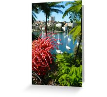 Mosman Bay Flora, Mosman NSW Greeting Card