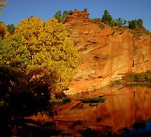 Zion Reflections by Kater2009