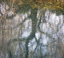 Blowering reflections by Jennifer Eurell