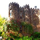 Camelot Castle by Kazzii