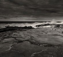 Breaking Waves And Seagulls by MiImages