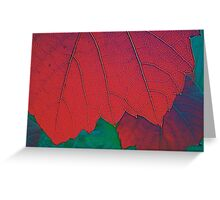 Autumnal Glory - Melbourne Australia Greeting Card