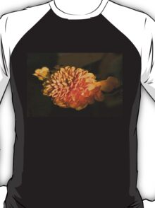 Chrysanthemum Gently Floating in the Fountain of Campo de Fiori, Rome, Italy T-Shirt